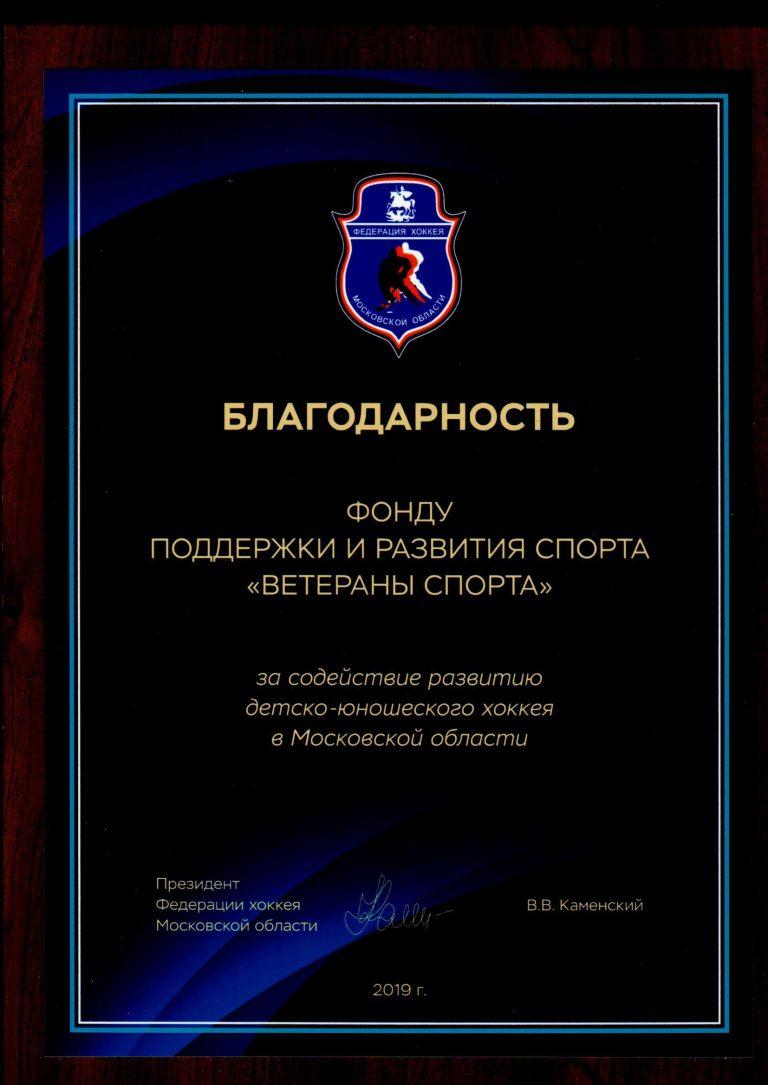 Президент Федерации хоккея Московской области В.В. Каменский