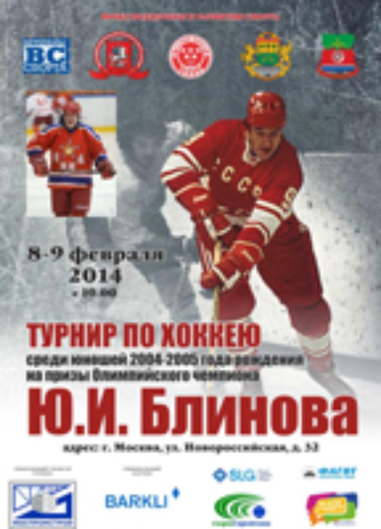 Турнир на призы Блинова Ю.И. 2014 г.