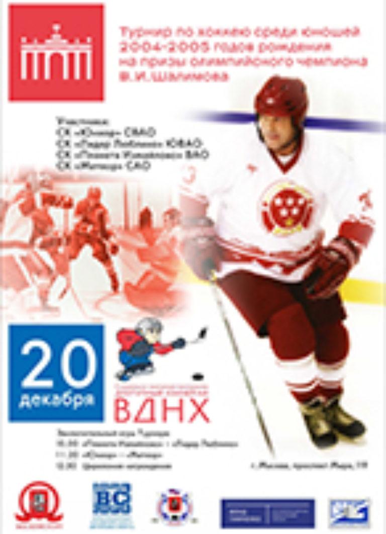 Турнир на призы Шалимова В.И. 2014 г.