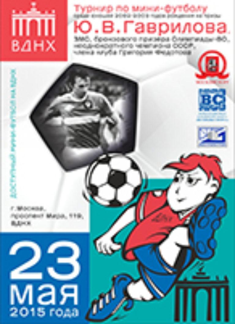 Турнир по мини-футболу на призы Гаврилова Ю.В. 2015 г.