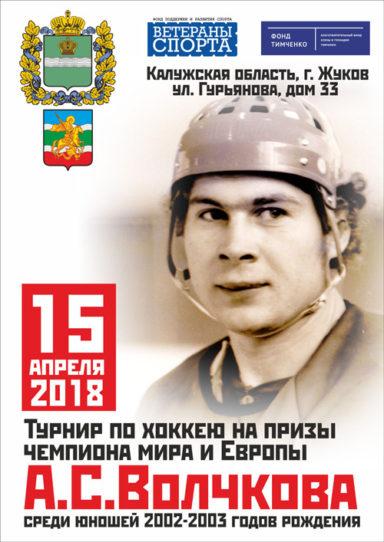 Турнир на призы А. С. Волочкова 2018 г.